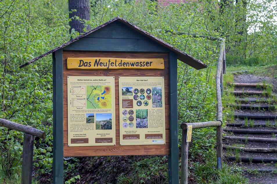 An Schautafeln erfährt der Wanderer jetzt viel Wissenswertes über die Pflanzen- und Tierwelt im Gründel und Umgebung in Oderwitz.
