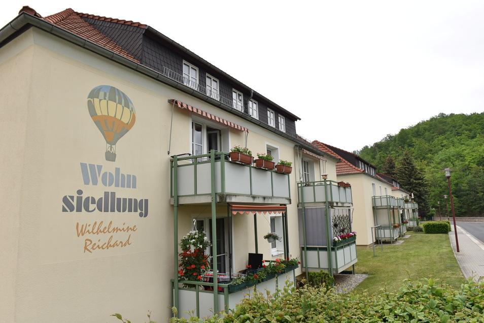 Eine Siedlung wurde bereits nach Wilhelmine Reichard benannt, nun soll es hier auch ein Denkmal geben.
