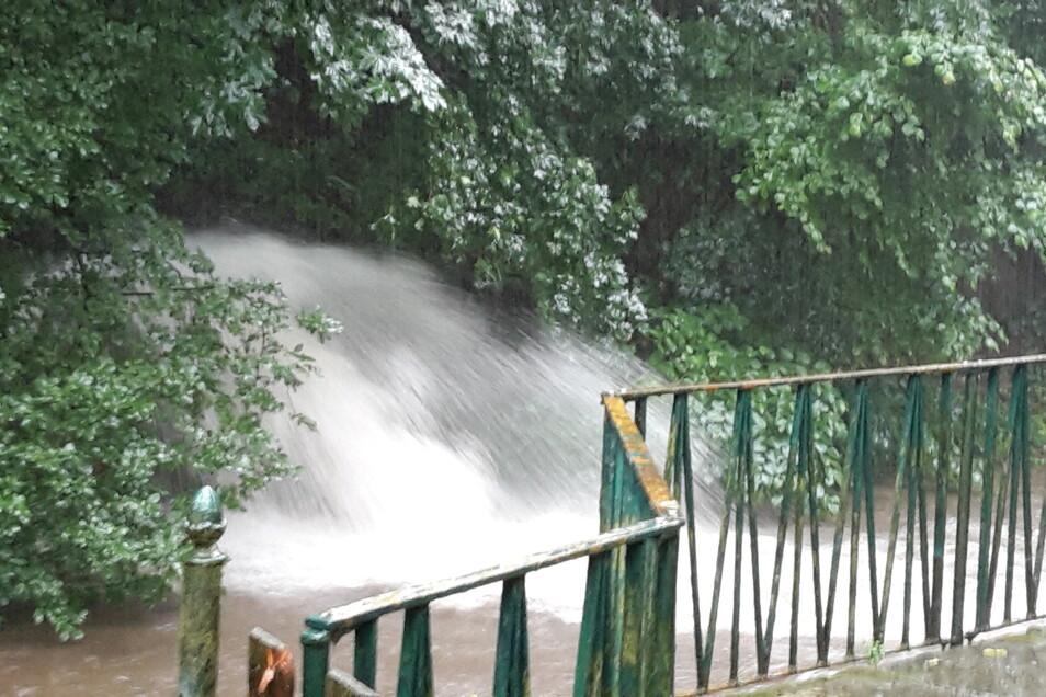 Da ist kein Halten mehr. Die Kanalisation schafft die Regenmengen nicht. Hier ergießt sich das Wasser von Weberstraße, Bergstraße und Friedhofstraße in die Sebnitz.