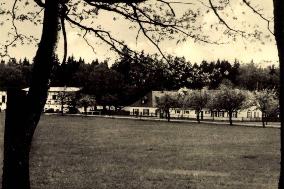 Die Hofewiese wurde 1547 erstmals urkundlich erwähnt. 1804 kaufte der sächsische Kabinettsminister Graf Camillo Marcolini das Areal und ließ ein neues Haus errichten. 1828 übernahm König Anton von Sachsen das Gelände.