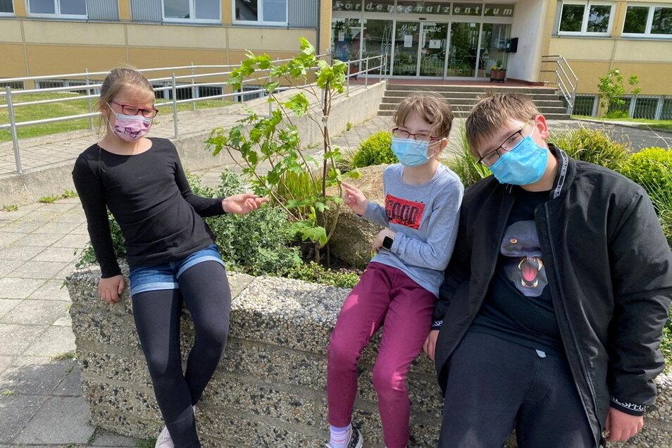 Lara, Sophie und Konstantin aus der Klasse 5a halfen beim Einpflanzen der Ersatzbäumchen, die die Nachbarn spontan vorbeibrachten.