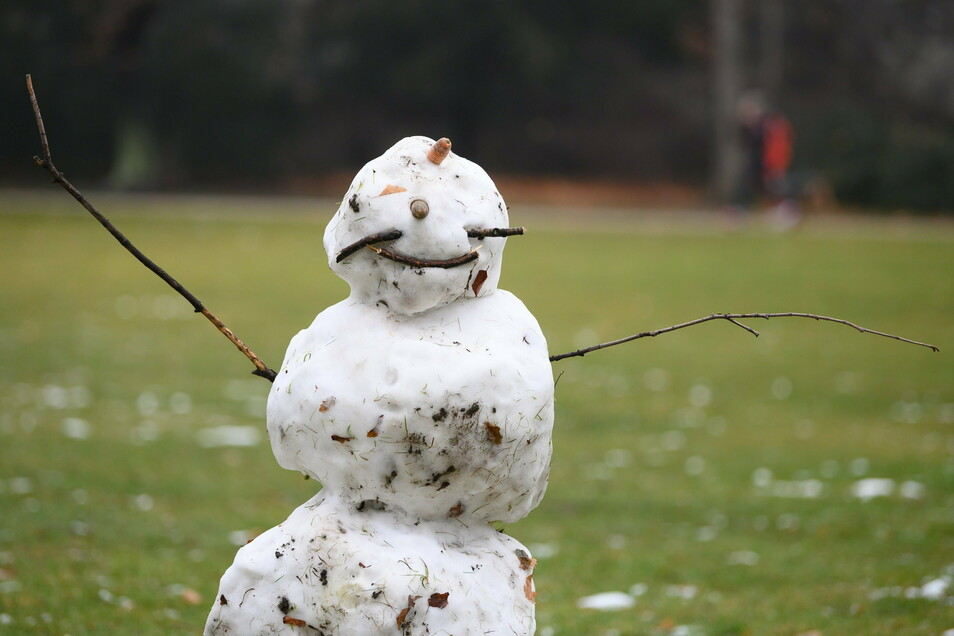 Ein Schneemann steht in Dresden auf einer Wiese.