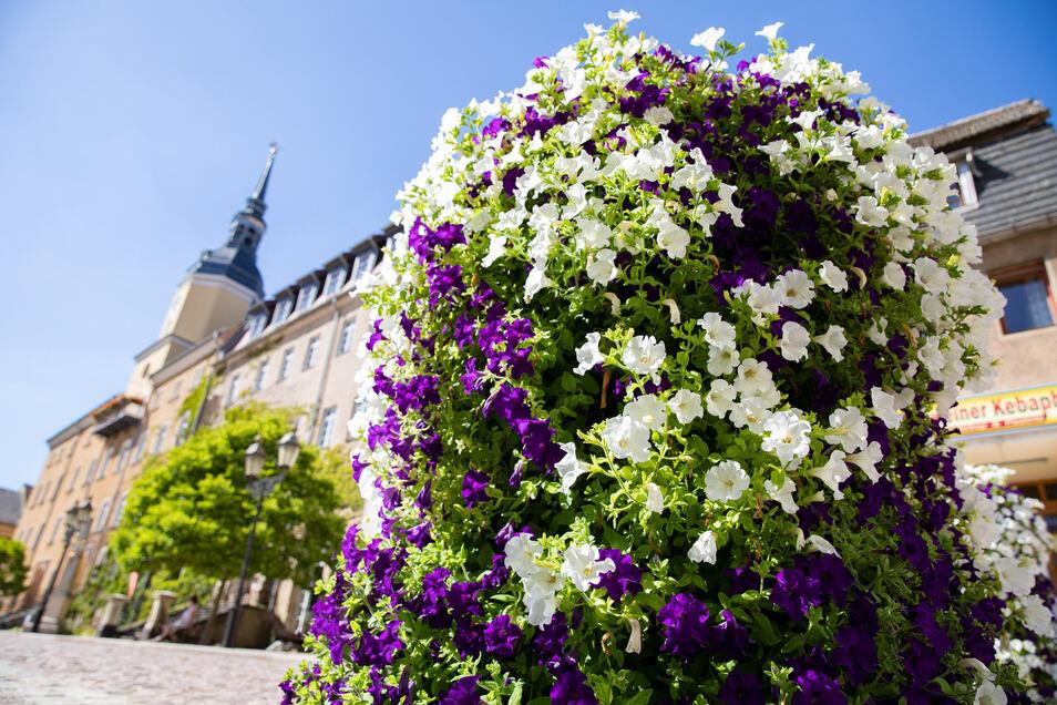 Für ein blühendes Roßwein haben die Stadtgärtner den Anfang gemacht und an mehreren Stellen solche Hochbeete bepflanzt.