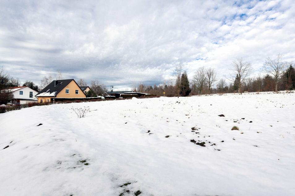 Im Königsteiner Ortsteil Leupoldishain könnten bis zu 15 Eigenheime gebaut werden.