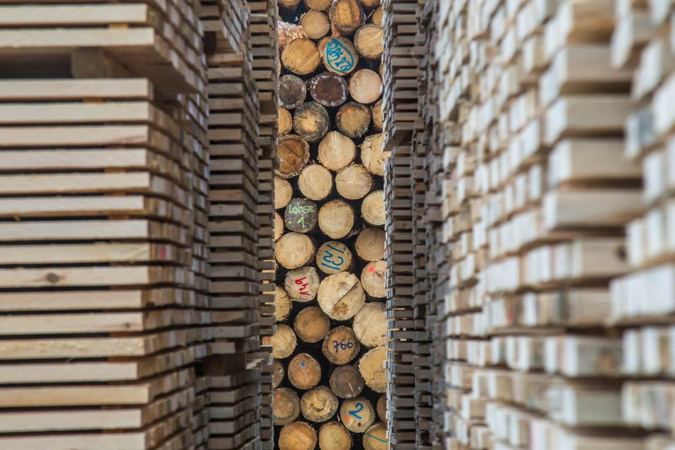 Dem Sägewerk von HS Timber Production in Kodersdorf könnte bei der praktischen Umsetzung von Holzbau-Ideen eine wichtige Rolle zukommen.