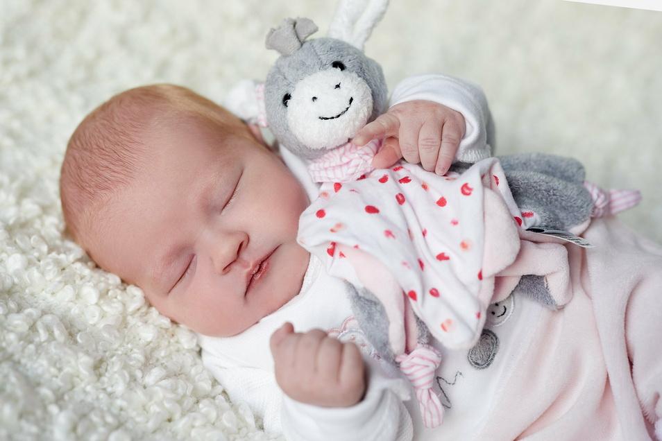 Lina Lotta, geboren am 3. Dezember, Geburtsort: Kamenz, Gewicht: 3.140 Gramm, Größe: 51 Zentimeter, Eltern: Nicole Schurz und Stefan Krüger, Wohnort: Rammenau