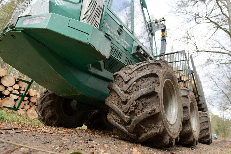 Um Holz zu ernten, kommen schwere Holzerntemaschinen zum Einsatz. Ihr Gewicht schadet den Holz- und Forstwergen.
