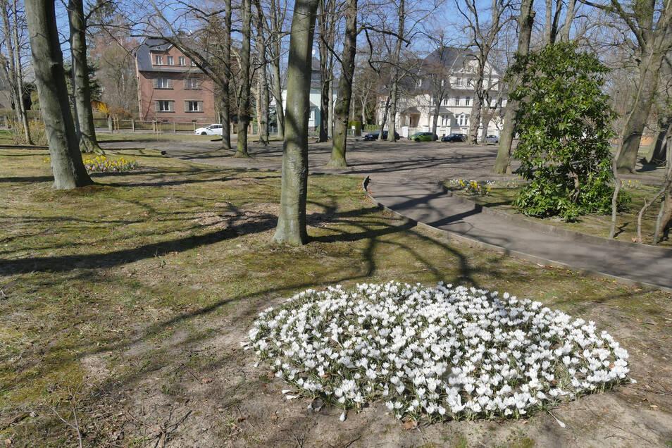 Auch der Harthaer Stadtpark war am Wochenende leer gefegt. Viele Menschen folgten der Bitte der sächsischen Landesregierung und blieben zu Hause.