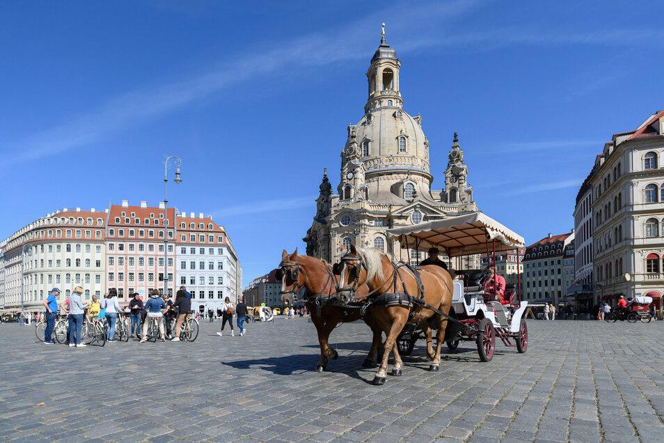Die Hufen klappern wieder auf dem Dresdner Neumarkt. Ein Zeichen dafür, dass Urlauber in der Stadt sind. Doch sind es genug?