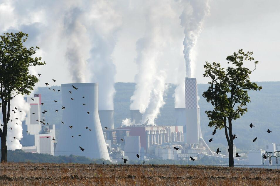 Das Kraftwerk Turow jenseits der Neiße ist ein Sinnbild für Polens Energiepolitik. Erst kürzlich ist die Laufzeit für die zugehörige Grube verlängert worden.