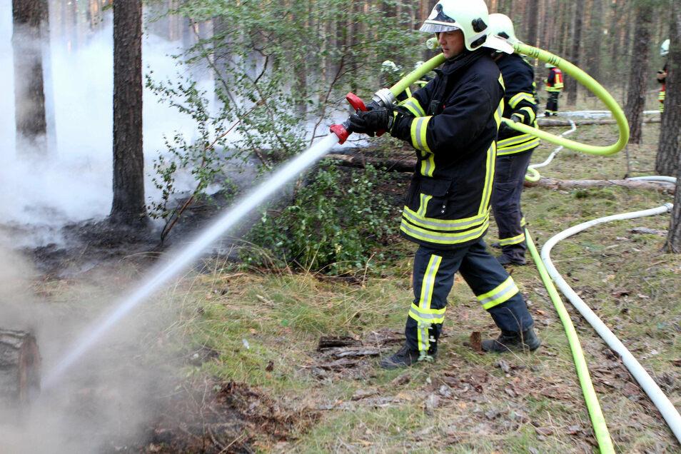 Zu einem Waldbodenfeuer an der Landesgrenze rückten am Montagmorgen Brandenburger und sächsische Feuerwehren aus.