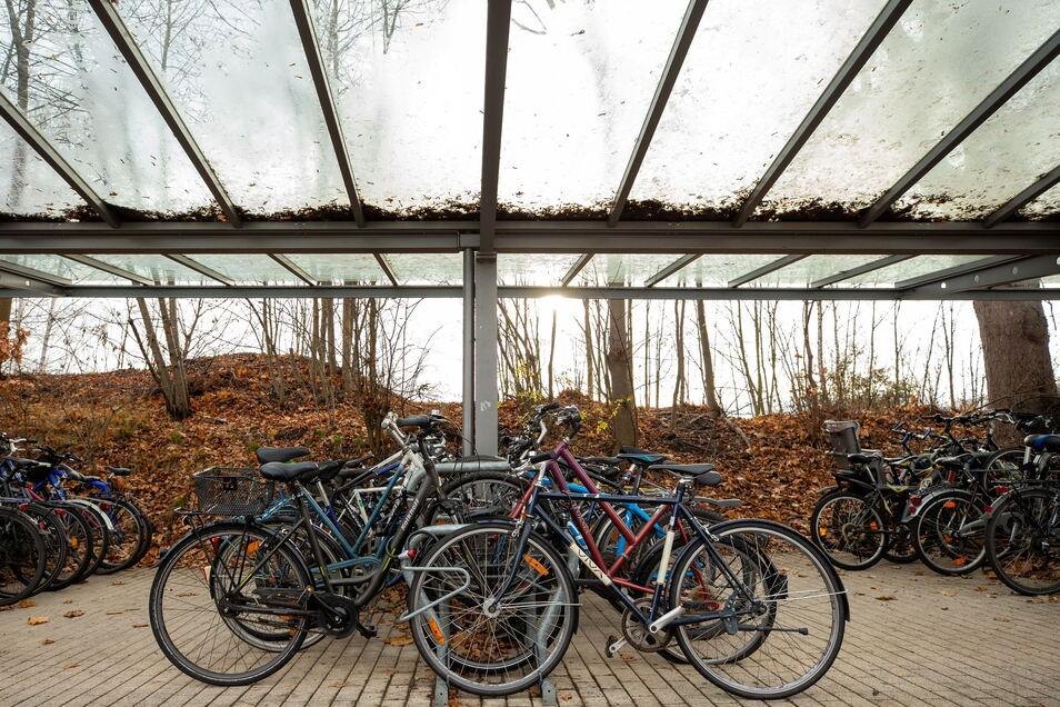 Fahrradabstellanlage am Pirnaer Bahnhofsvorplatz: Platz für 214 Drahtesel.