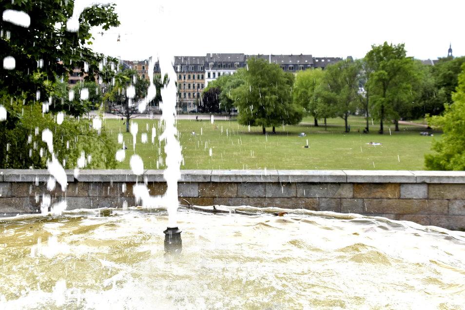 Im Alaunpark ist es am Sonntagmittag eher ruhig. Am Sonnabend waren dagegen in den öffentlichen Parks und an den Elbwiesen Menschenmassen unterwegs.