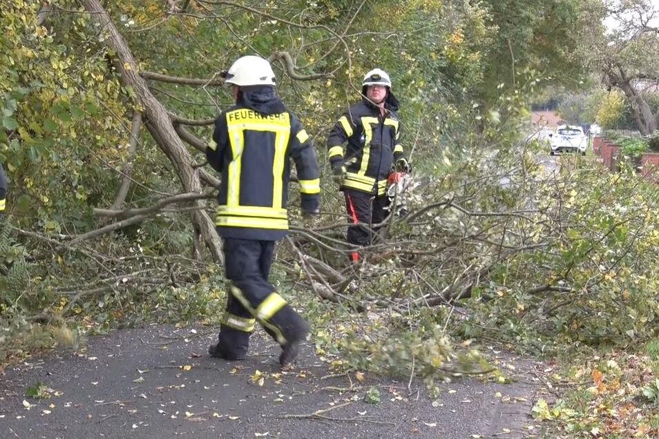 Feuerwehrleute zersägen mit Kettensägen einen Baum, der durch starken Wind auf eine Straße gestürzt war.