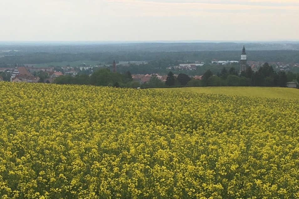 Blick auf Kamenz vom Oberlausitzer Ringweg