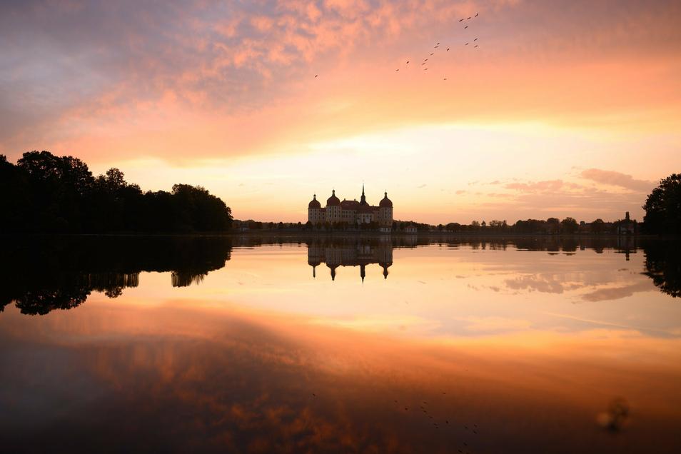 Das Schloss Moritzburg spiegelt sich bei Sonnenaufgang im Schlossteich.