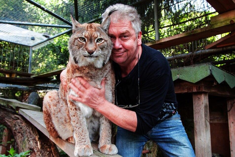 Luchs Maxy starb im vergangenen Jahr - und hinterließ eine große Lücke.