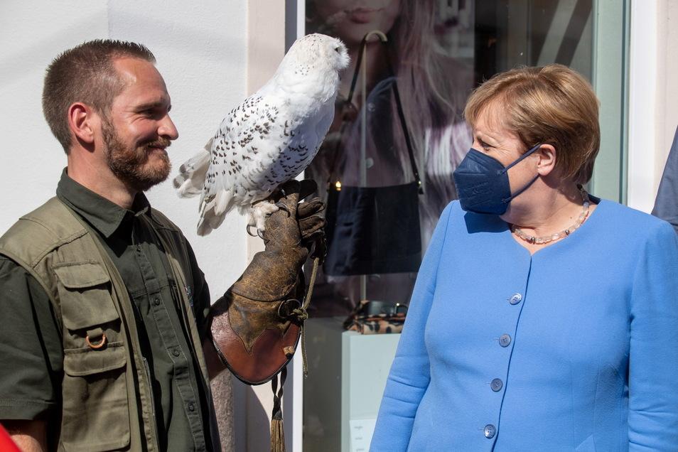 Angela Merkel (CDU) spricht mit Kay Deichfischer vom Zoo Stralsund .