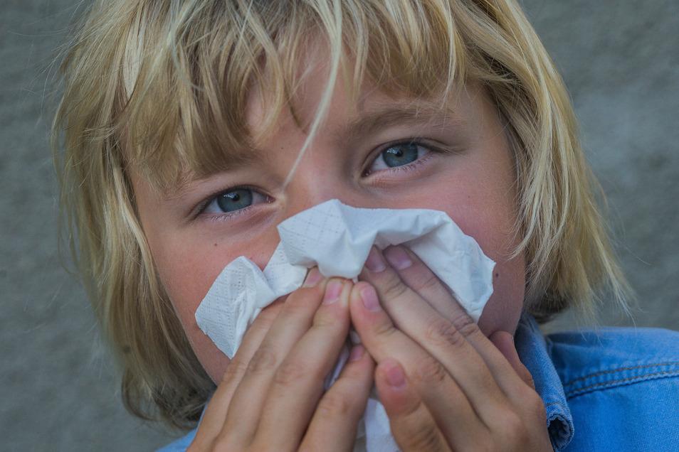 Herbstzeit ist Erkältungszeit. Auch in der Region Döbeln gibt es jetzt vermehrt Atemwegsinfekte.