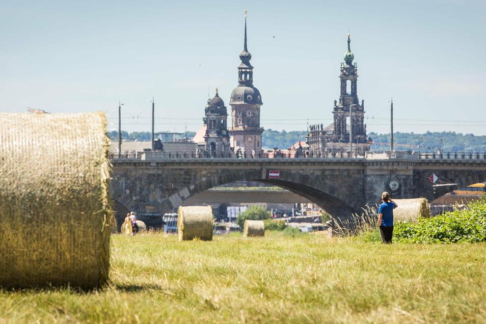 Trockenheit und auch heiße Tagen prägten das Wetter in Dresden im vergangenen Jahr.
