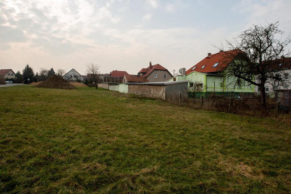 Die alte Streuobstwiese hinter der Häuserzeile in der Bahnhofstrasse in Lampertswalde. Hier entstehen jetzt Eigenheime.