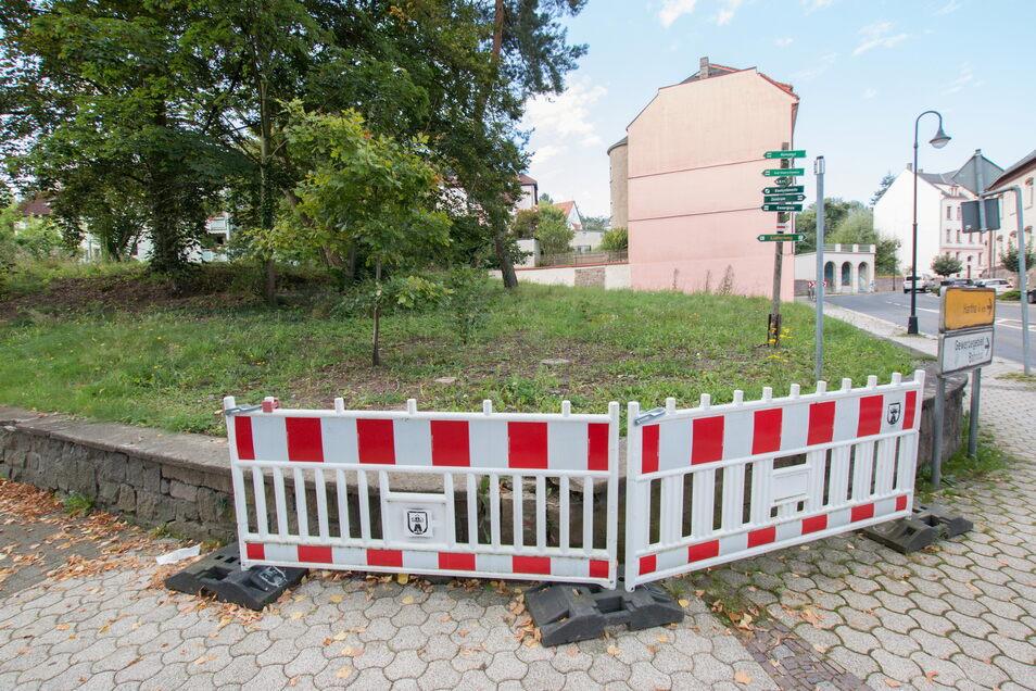 Die Grünfläche an der Ecke Härtelstraße/Mittweidaer Straße soll kultiviert und an dieser Stelle ein kleiner Park gestaltet werden.