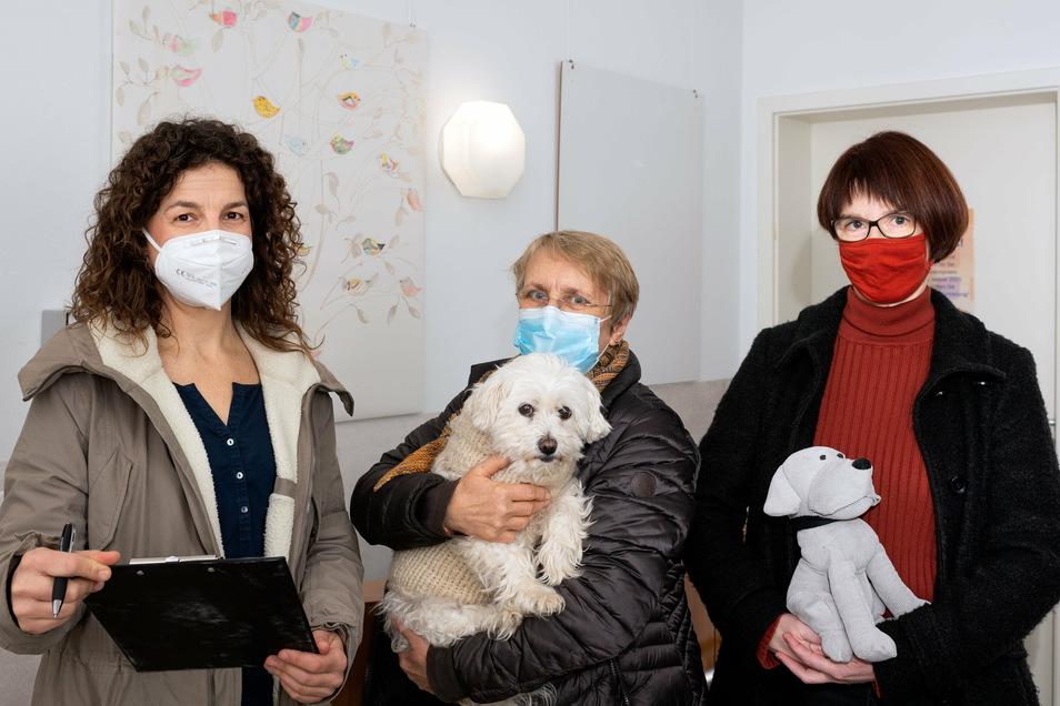 Ines Punde, Barbara Luger, Dr. Doris Großmann (v.l.nr.): drei Kinderärztinnen für Lohmen.