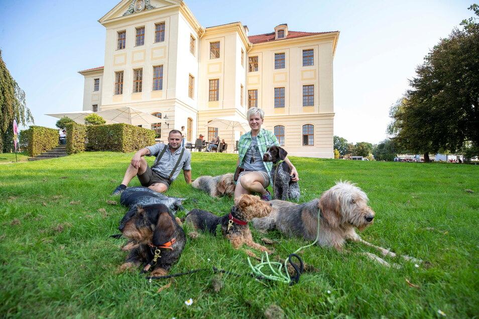 Kein bisschen gefährlich: Katja Kolbe und Markus Handschuh mit ihrer Jagdhundefamilie vorm Zabeltitzer Palais.