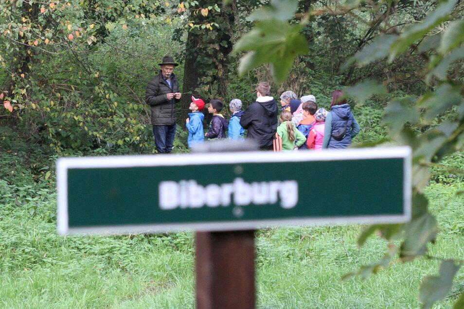 Ortsvorsteher Arndt Patzig erzählt den Kindern der 2. Klasse der evangelischen Grundschule Technitz Wissenswertes über den Biber.