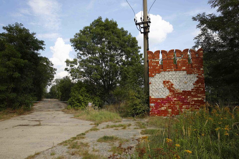 Auf dem Gelände der alten Panzerschule in Röhrsdorf bei Königsbrück sollte ein Solarpark entstehen. Doch daraus wird nichts.