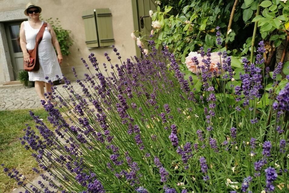2. Offene Gartenpforte in Kamenz & Umgebung: 22 Hobbygärtner und Gartenfreunde öffneten ihre grünen Refugien für neugierige Gäste.