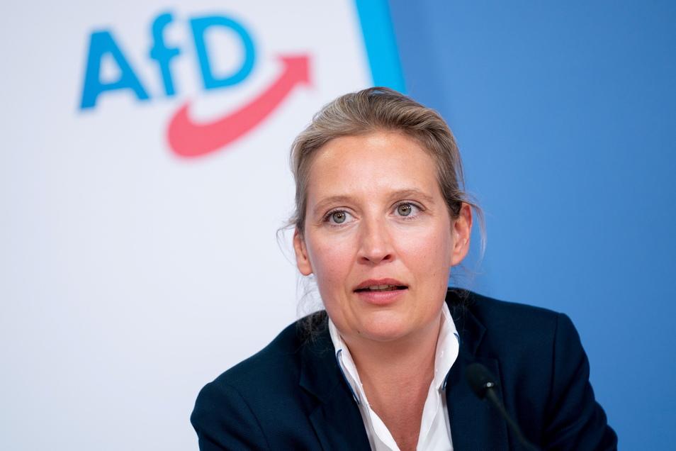 Die Spende an Alice Weidels AfD-Kreisverband kommt die Partei teuer zu stehen.