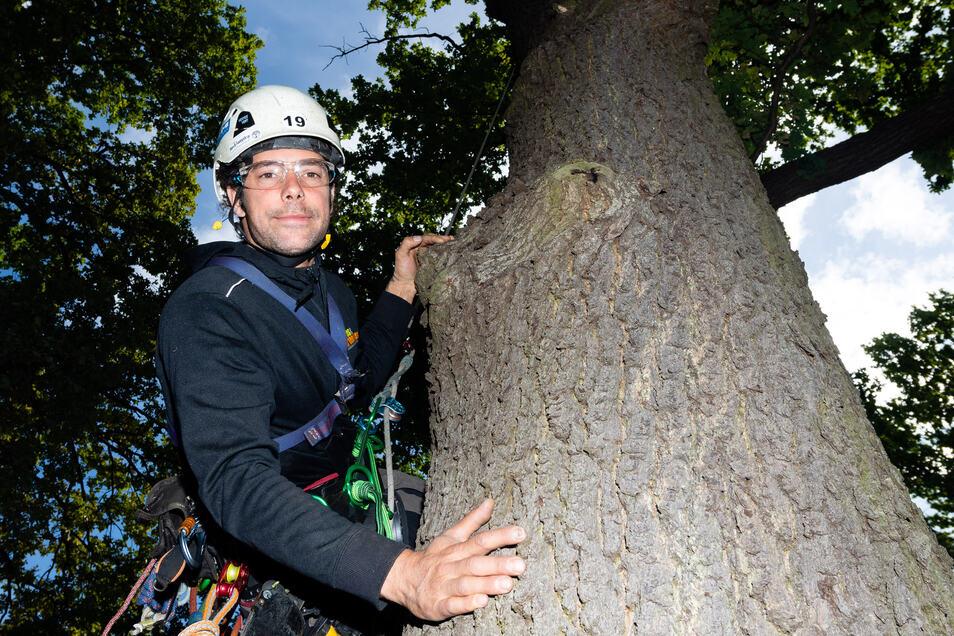 Gregor Hansch will hoch hinaus – in einen Baumwipfel. Der Berliner ist Baumpfleger und derzeit im Rammenauer Schlosspark im Einsatz. Bis Sonntag findet hier zugleich die Ost-Meisterschaft der professionellen Baumkletterer statt.