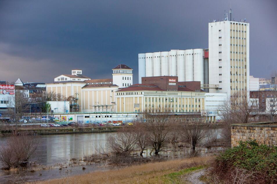 Unübersehbar: Das Muskatorgelände prägt das Riesaer Stadtbild, steht aber zum größten Teil leer.