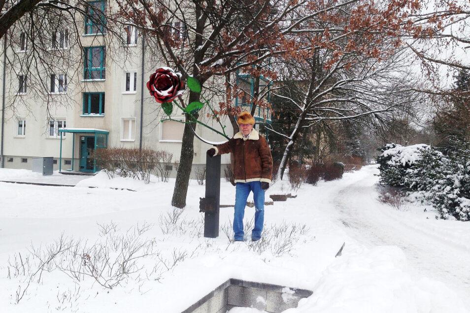 """Detlef Degner an der Rose vor dem """"Eingang"""" zum Rosarium (WK VI) von der Bautzener Allee her. Sie soll wieder so auferstehen, wie sie einst geschaffen ward."""