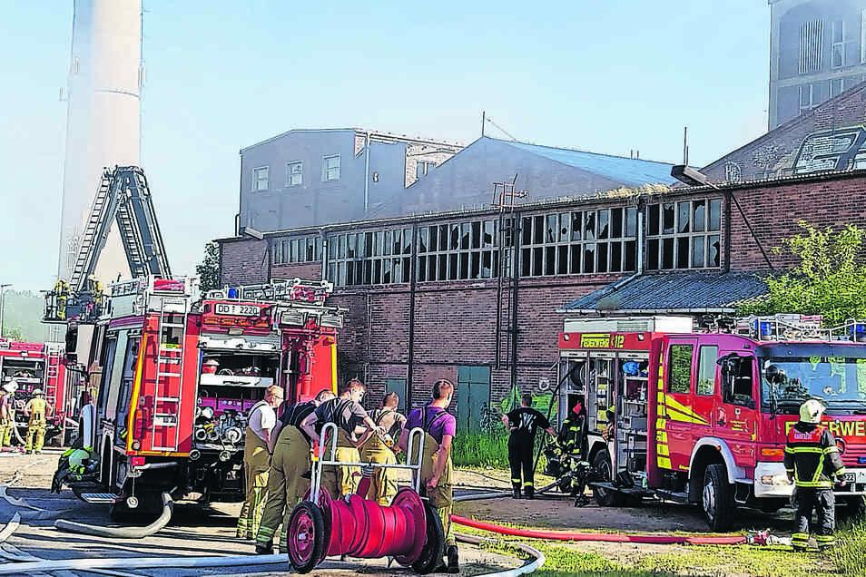 Über 50 Feuerwehrleute aus Coswig und den benachbarten Orten mussten zu Pfingsten löschen.
