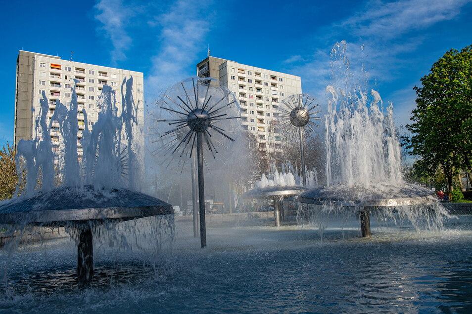 Der Pusteblumenbrunnen gehört zu den beliebsten Treffpunkten in Prohlis. Während des Lockdowns vermehrt auch für Alkoholiker.