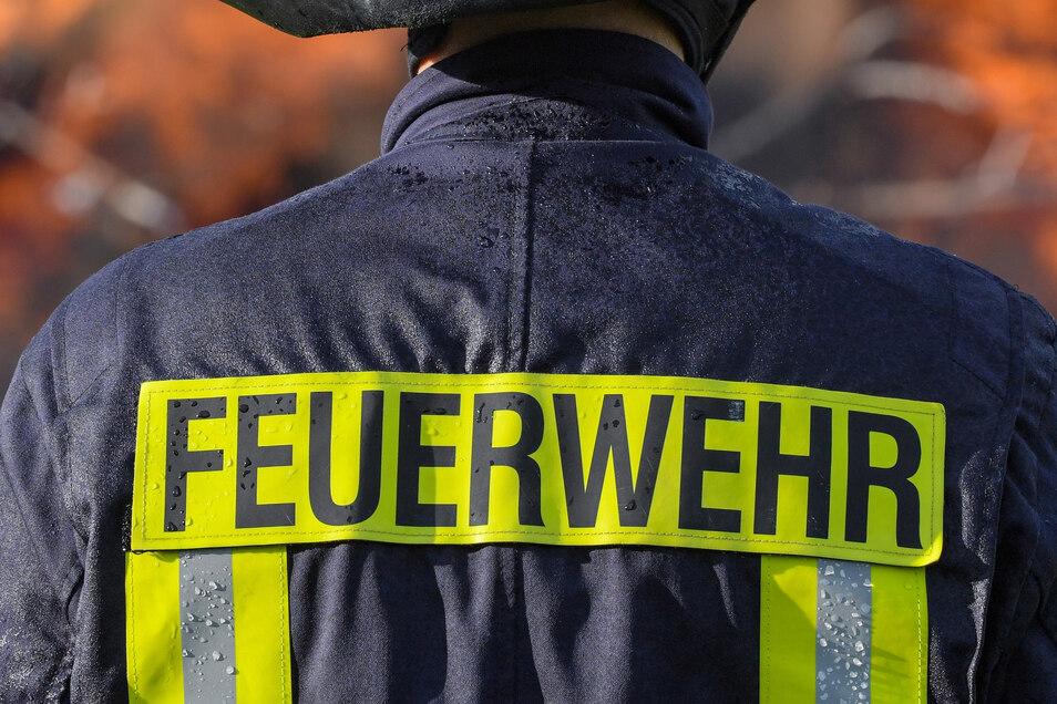 Die Feuerwehr Görlitz rückte am Montag zu einem Baum-Brand aus, hier ein Symbolfoto.