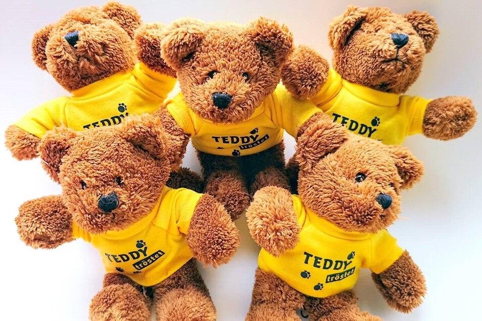 Kleine Plüschbären sollen Kinder in schwierigen Situationen trösten. Der Verein Oberlausitzer Kinderhilfe hat jetzt 2.500 Stück davon verteilt, unter anderem an Krankenhäuser.