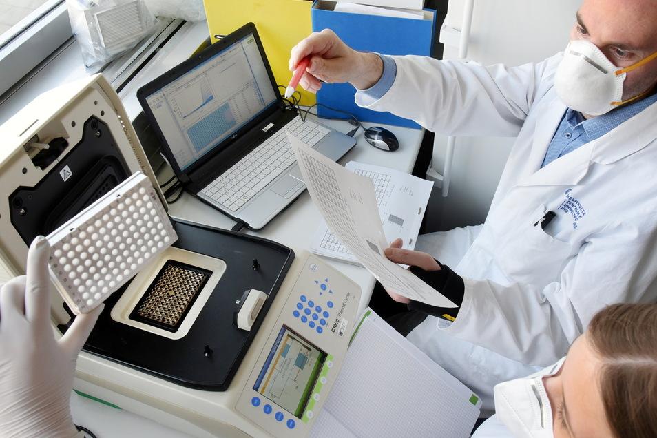 Im Institut für Umweltmikrobiologie am Helmholtz-Zentrum für Umweltforschung (UFZ) wertet der Virologe Rene Kallies am Computer Abwasserproben aus Klärwerken aus.