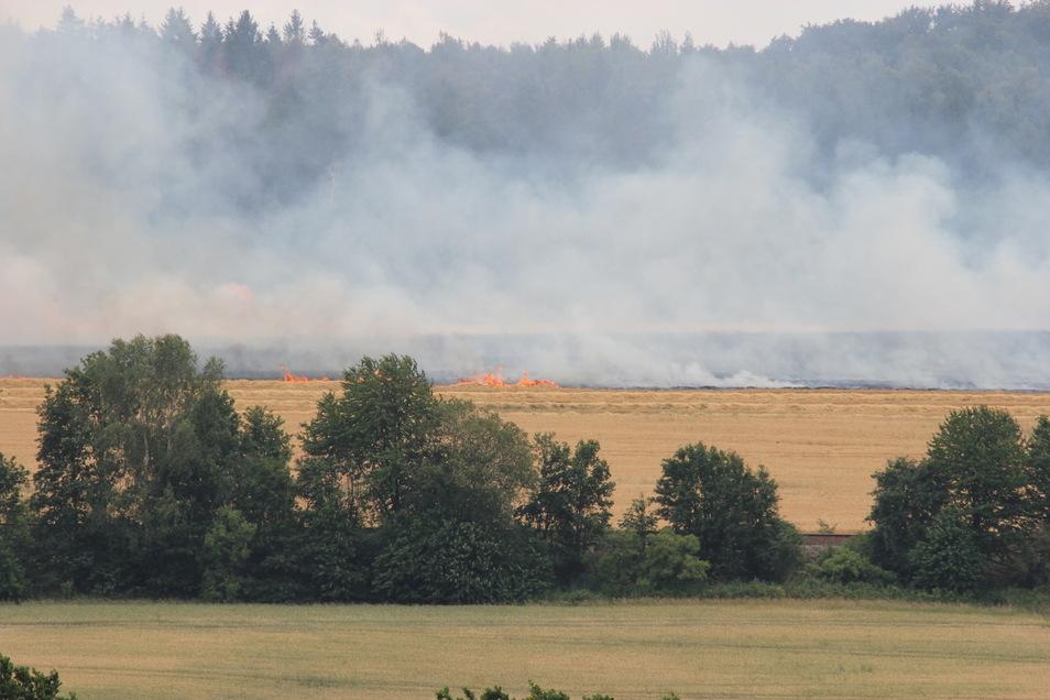 Das Feld steht in Flammen.