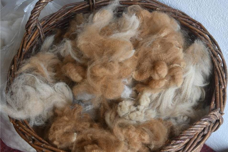 Alpaka-Rohwolle zu verspinnen, soll Stress abbauen helfen.