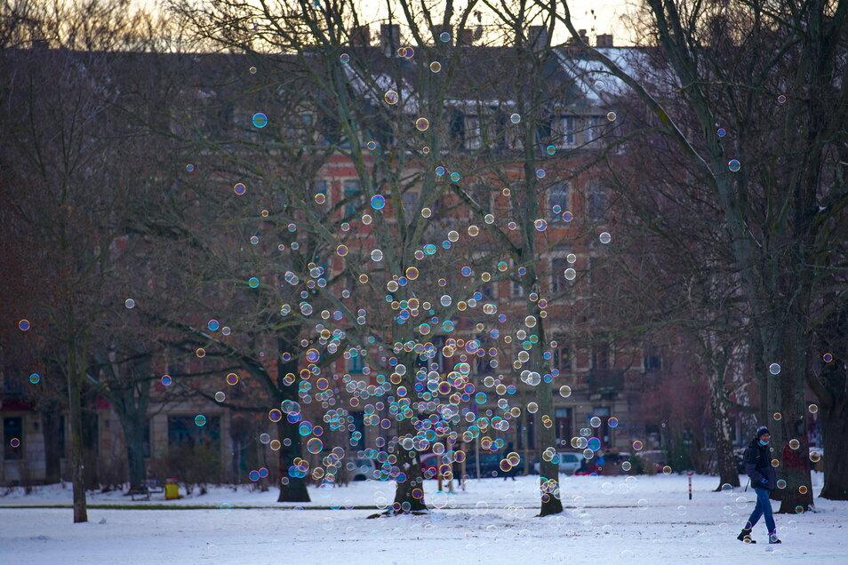 Seifenblasen steigen auf im Alaunpark.