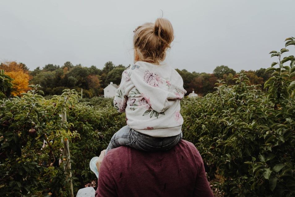 Bei fast jedem dritten Alleinerziehenden ist die Beziehung zum Kind durch Corona belastet, zeigt die Studie.