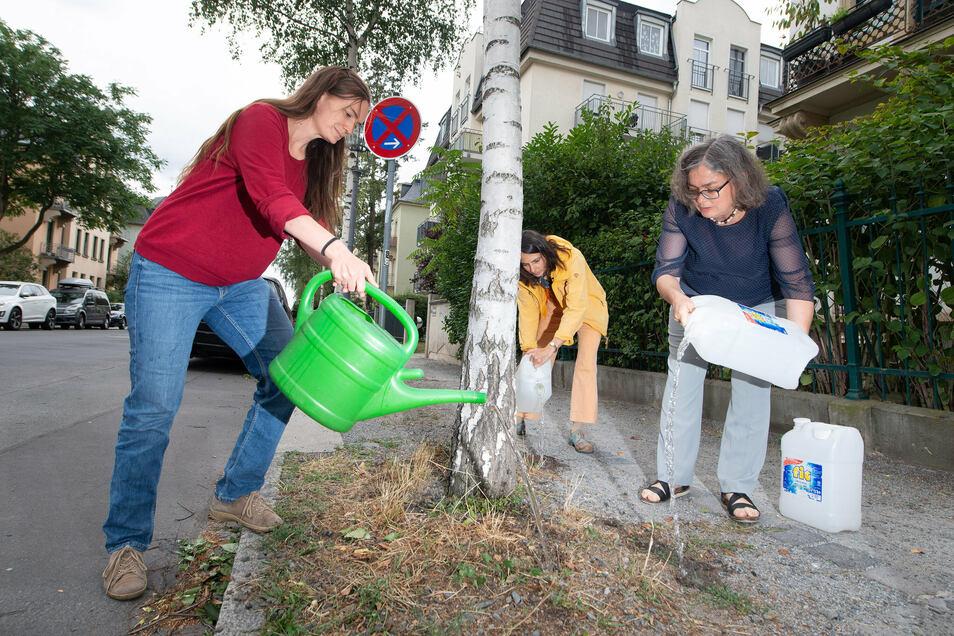 Louise Hummelschröter, Esther Lange - beide von der Initiative Dresden gießt, gießen mit Umweltbürgermeisterin Eva Jähnigen an einer jungen Birke auf der Ermelstraße.
