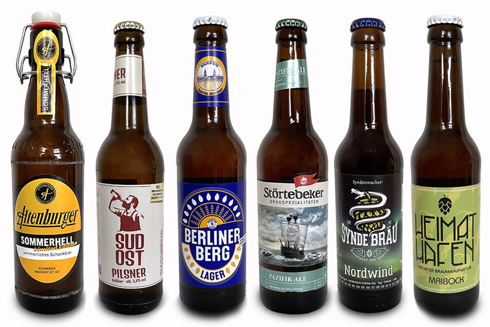 Diese Biere wird Biersommelier Jens Zimmermann mit seinen Gästen verkosten (v. l. n. r.): ein leichtes Helles, ein kaltgehopftes Lager, ein Pilsner, ein India Pale Ale, ein Black IPA und ein Maibock.