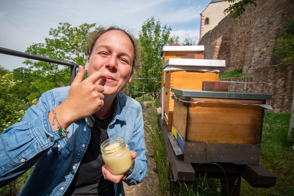 Cremig wird der Honig sein, den sich die Burgbesucher bald aufs Frühstücksbrötchen schmieren können.