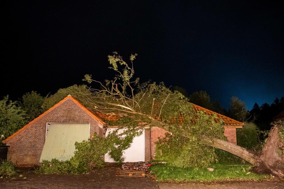 Niedersachsen, Berumerfehn: Ein umgewehter Baum hängt noch halb auf dem Dach eines Hauses.