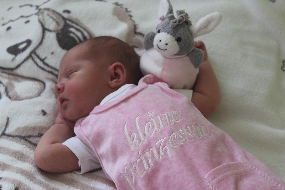 Josefin Susanna, geboren am26. Mai, Geburtsort: Pirna, Gewicht: 3.560 Gramm, Größe: 50 Zentimeter, Eltern: Stefanie und Norman Grahl, Wohnort: Pirna