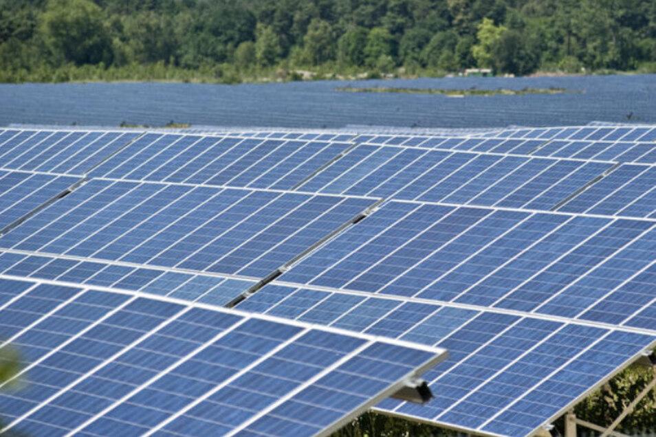 Solche Solarparks gibt es an vielen Orten. Wird es in Weickersdorf auch einen geben?